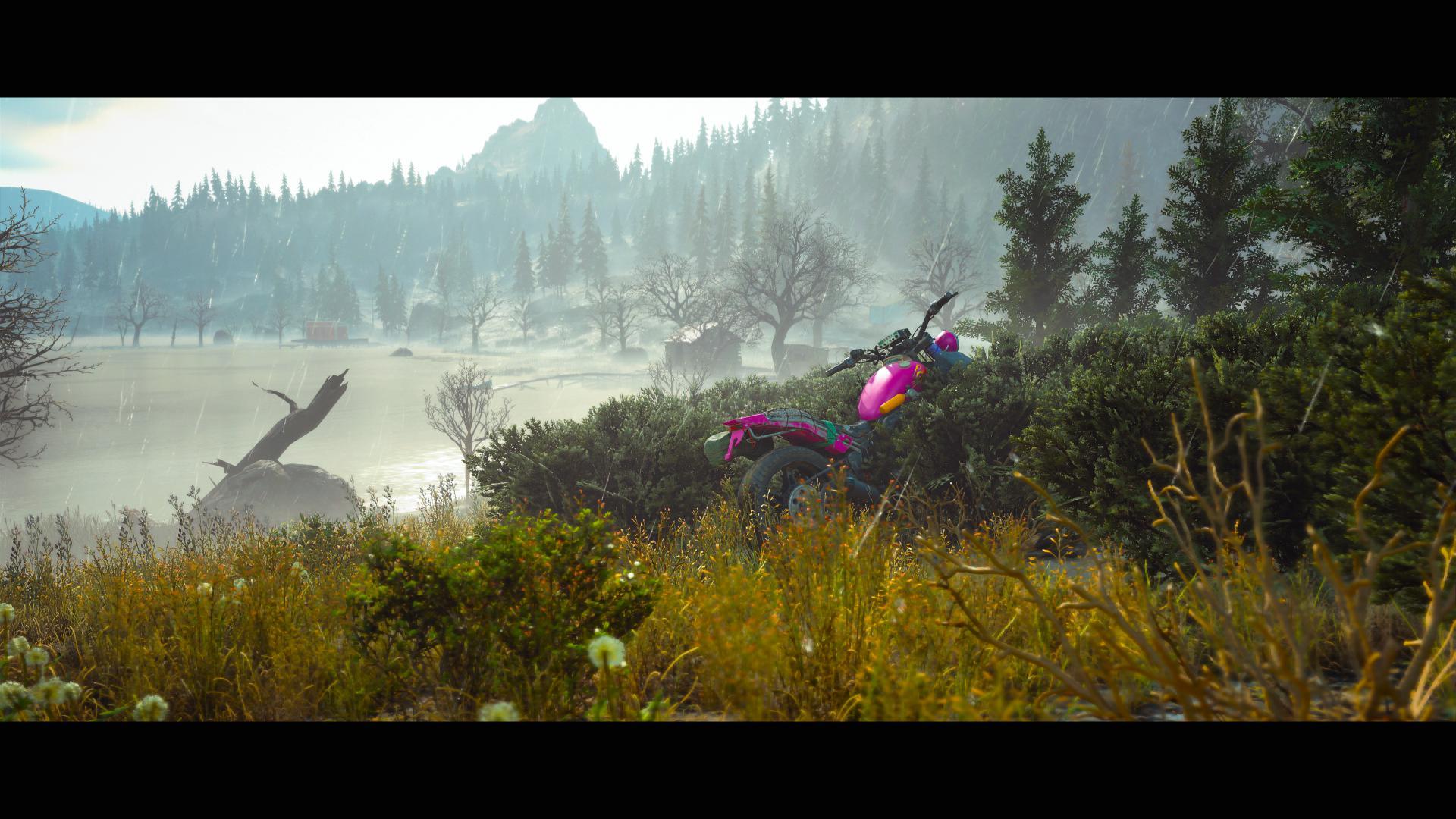 A purple motorbike abandoned in the bushes near a mist laden lake.