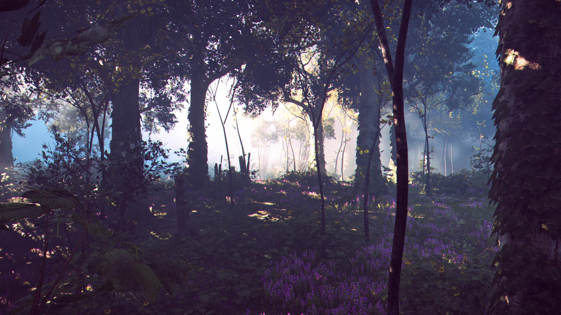 A worryingly realistic picture of the in-game forest.
