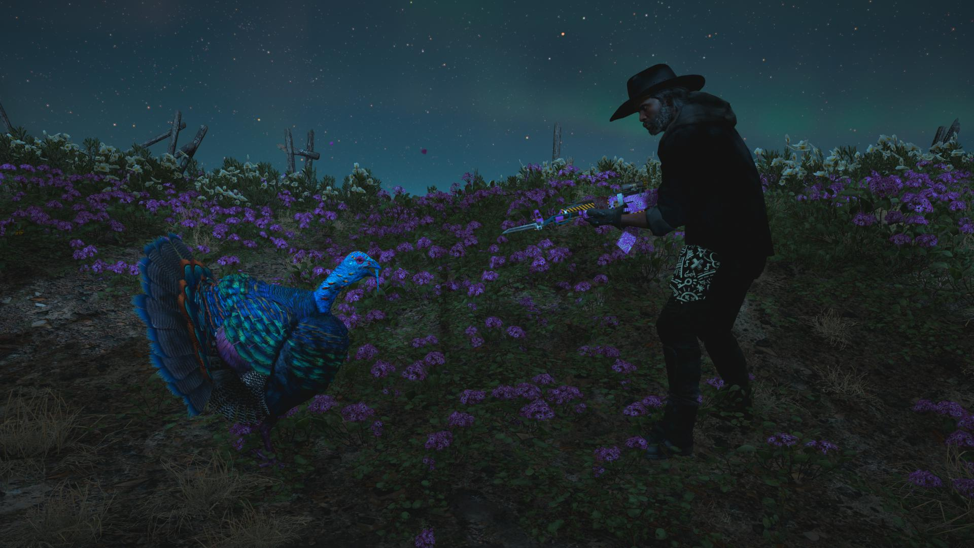 The player squares off against a turkey whilst defensively holding a shotgun.