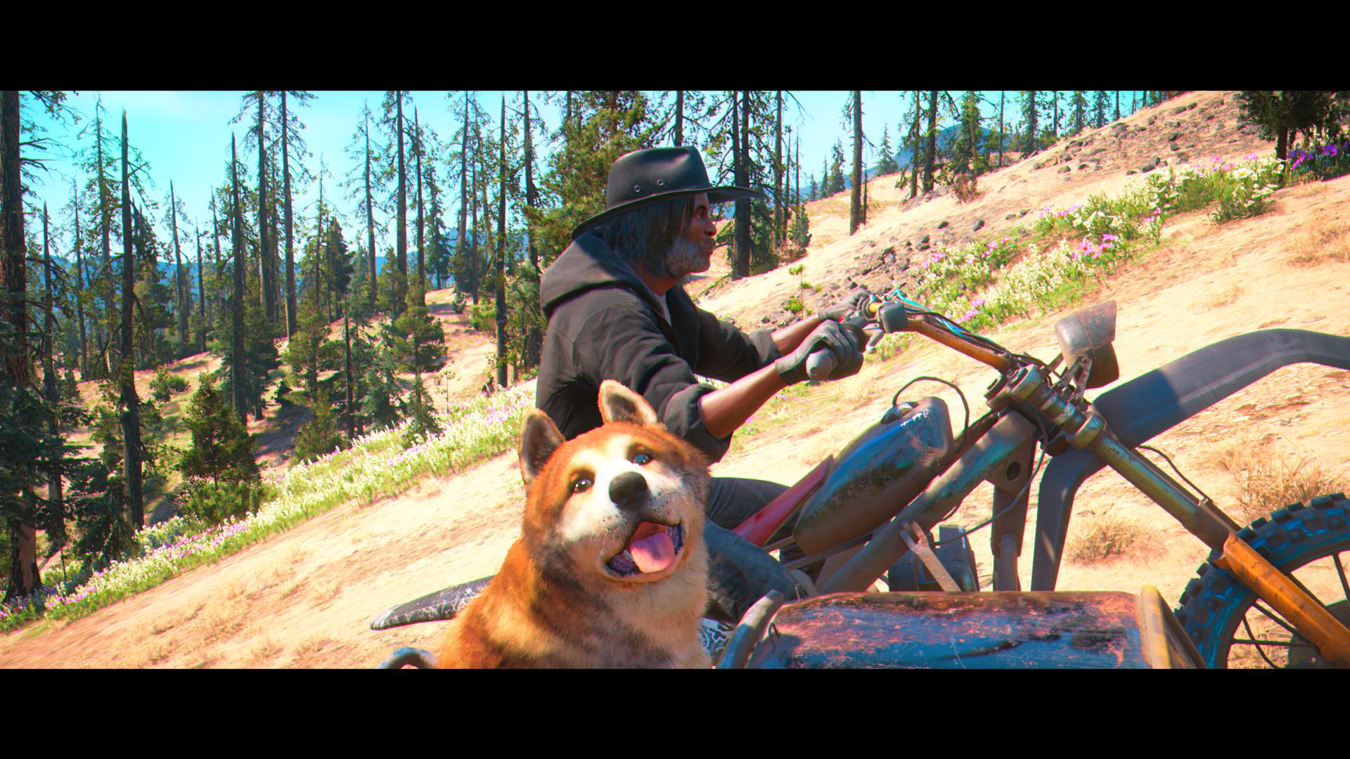 It's the player driving uphill on their motorbike with a dog in the sidecar.