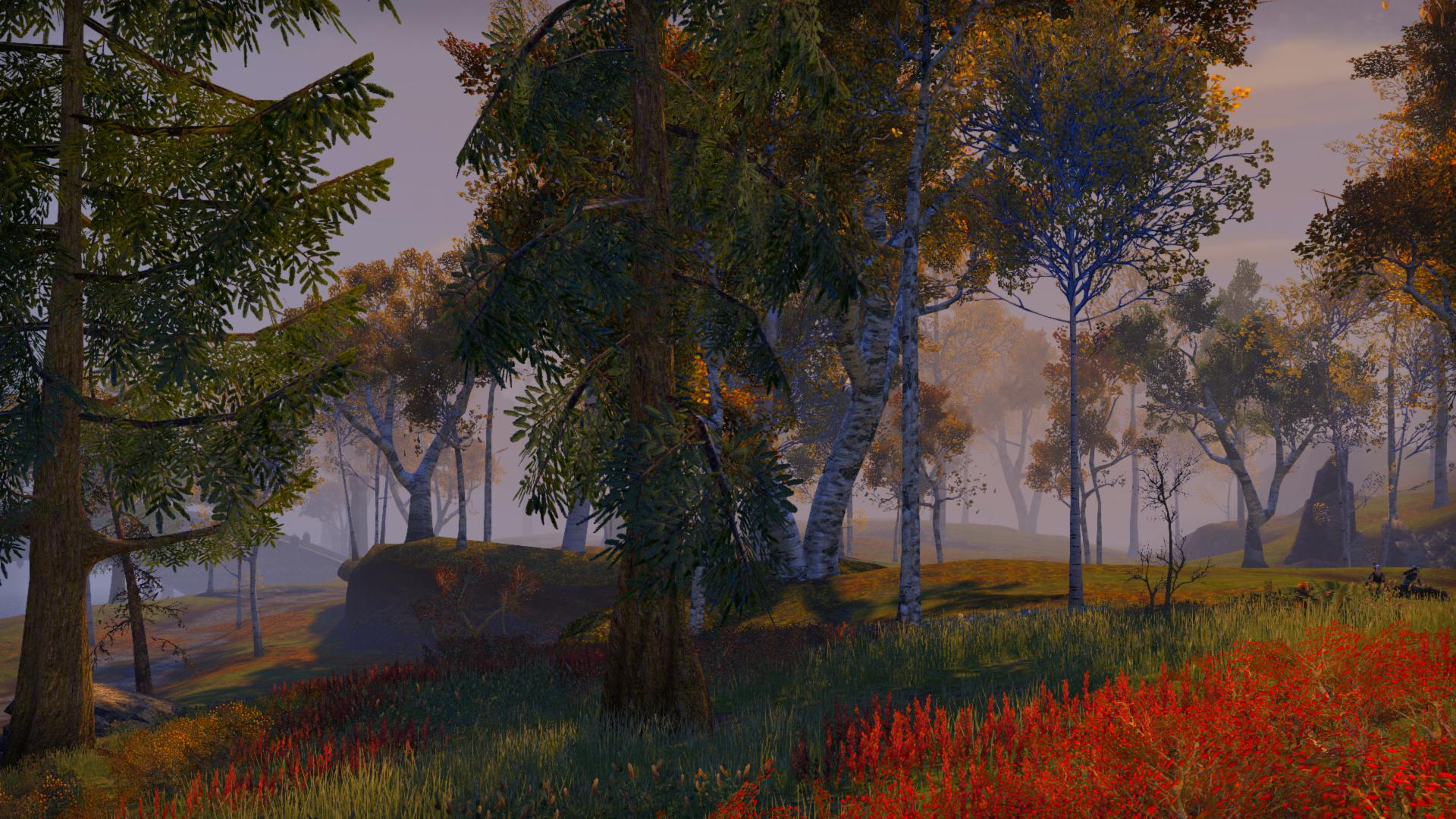 It's a videogame forest, red plants in the foreground, a sweep of green and a selection of autumnal shades make the trees almost, but not quite, akin to a painting.